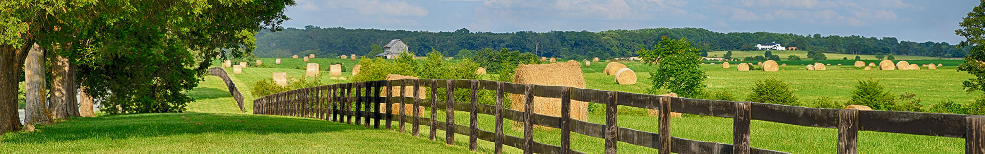 Farms in Louisa County VA for Sale